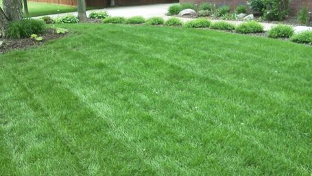 lawn fertilizing sioux falls sd